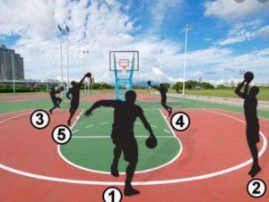 vị trí trong bóng rổ